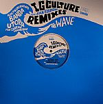 The Wave (IG Culture remixes with John Robinson)