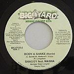 Body A Shake (remix)
