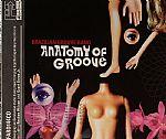 Anatomy Of Groove