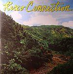 Risco Connection