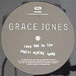 Love You To Life (Digital Mystikz remix)