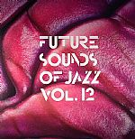 Future Sound Of Jazz Vol 12