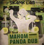 Skank Lab #1