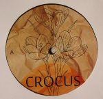Crocus 001
