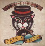 Cats & Rats