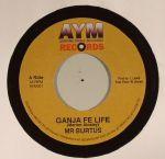 Ganja Fe Life