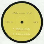 Shining Of Life