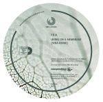 PBK: Seba & Deep Blue Remixes (reissue)