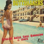 Buttshakers Soul Party Vol 13