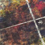 Ecdisis Vol 1 EP