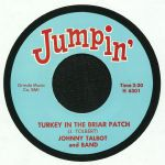 Turkey In The Briar Patch