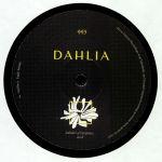 DAHLIA 995