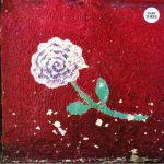 Dance Music: Album Sampler 003