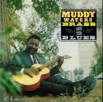 Muddy Brass & The Blues