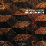 The Magical Record Of Blue Orchids