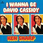 I Wanna Be David Cassidy
