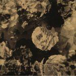 Apophenia EP