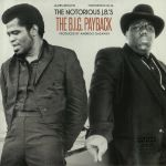 The Notorious JB's: The Big Payback (reissue)
