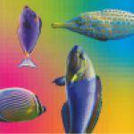 A Visual Brain: 1986-1993