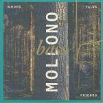 Woods Tales & Friends