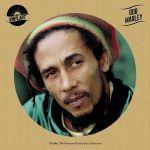 Vinylart: Bob Marley