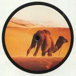 Camel Bossa