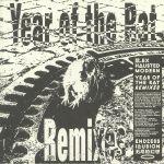 Year Of The Rat (remixes)