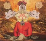 Patterns Of Abundance