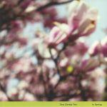 In Spring