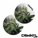 """Criminyl Master Kush 7"""" Slipmats (pair)"""