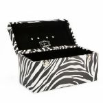 Zebra Print 120 Record Box