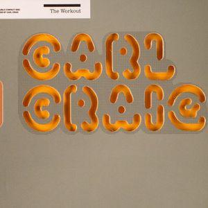 CARL CRAIG/VARIOUS - The Workout