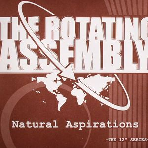 ROTATING ASSEMBLY, The aka THEO PARRISH - Natural Aspirations: The Rust Organcic