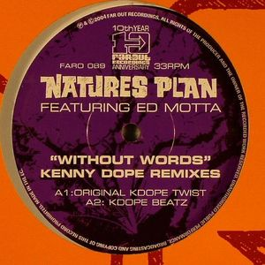 NATURES PLAN feat ED MOTTA - Without Words