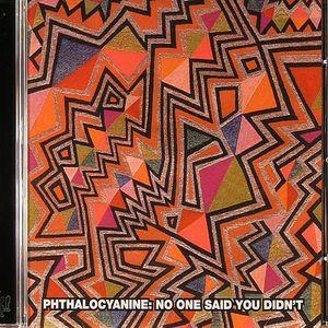 PHTHALOCYANINE - No One Said You Didn't