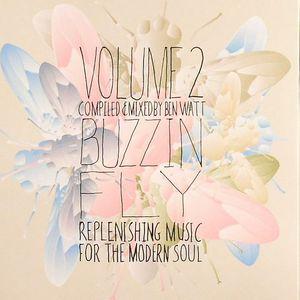 WATT, Ben/VARIOUS - Buzzin Fly Volume 2