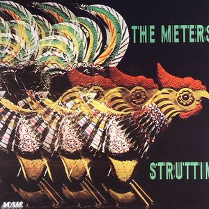 METERS, The - Struttin