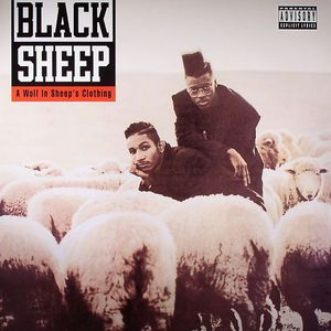 BLACKSHEEP - A Wolf In Sheep's Clothing