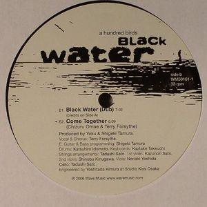 A HUNDRED BIRDS - Black Water