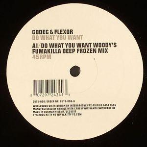 CODEC & FLEXOR - Do What You Want (remixes)