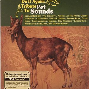 VARIOUS - Do It Again: A Tribute To Pet Sounds