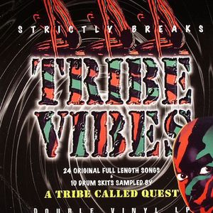 VARIOUS - Tribe Vibes