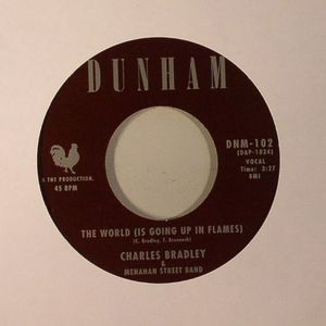 BRADLEY, Charles - The World (Is Going Up In Flames)