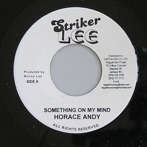 ANDY, Horace/KING TUBBYS/THE AGGROVATORS - Something On My Mind (Riddim)