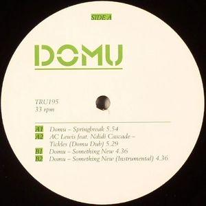 DOMU/AC LEWIS feat NDIDI CASCADE - Springbreak