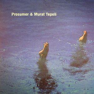 PROSUMER/MURAT TEPELI - U & I