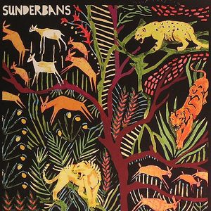 SUNDERBANS - We Only Can Because We Care
