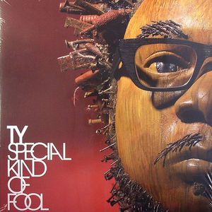 TY - Special Kind Of Fool