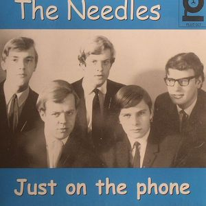 NEEDLES, The - Just On The Phone