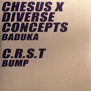 CHESUS X DIVERSE CONCEPTS/CRST - Baduka